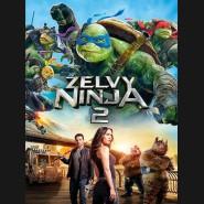 Želvy Ninja 2 - 2016  (Teenage Mutant Ninja Turtles: Out Of The Shadows) DVD
