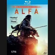 Náčelník 2018 (Alpha) Blu-ray
