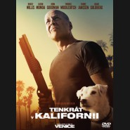 Tenkrát v Kalifornii 2017 (Once Upon a Time in Venice) DVD