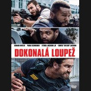 Dokonalá loupež 2018 (Den of Thieves) DVD