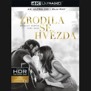 ZRODILA SE HVĚZDA 2018 (A Star Is Born) (4K Ultra HD) - UHD Blu-ray + Blu-ray