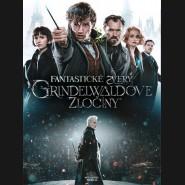 Fantastická zvířata: Grindelwaldovy zločiny 2018 (Fantastic Beasts: The Crimes of Grindelwald) DVD