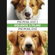 Psí poslání 1+2 (A Dog's Purpose) DVD KOLEKCIA