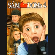Sám doma 4 (Home Alone 4)