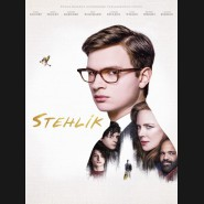 Stehlík 2019 (The Goldfinch) DVD