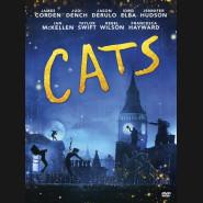 Cats 2019 DVD