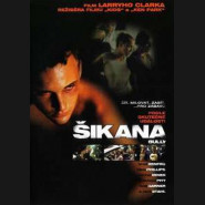 Šikana (Bully) DVD