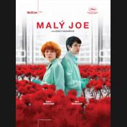 Malý Joe 2019 (Little Joe) DVD