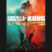 Godzilla vs. Kong 2021 DVD
