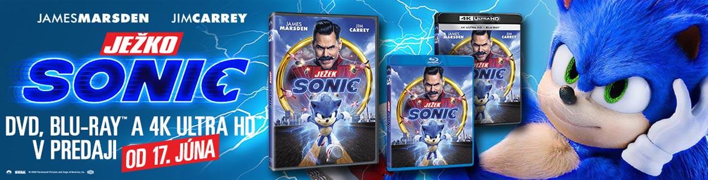Ježko Sonic 2020 (Sonic the He